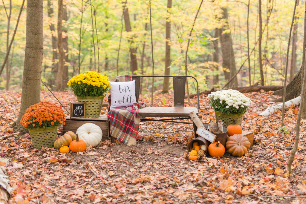 Whimsical Fall Decor - Mint Candy Designs